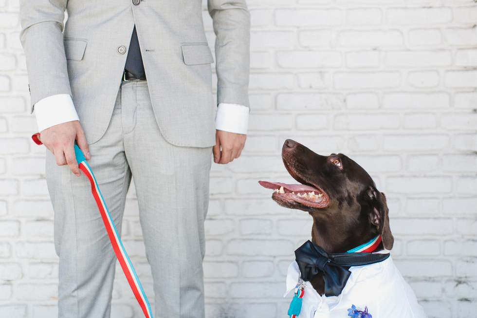 Oh my, what a charming bistro wedding with two charming grooms and their cute dogs (Photos by Frankie & Marilia) (18)