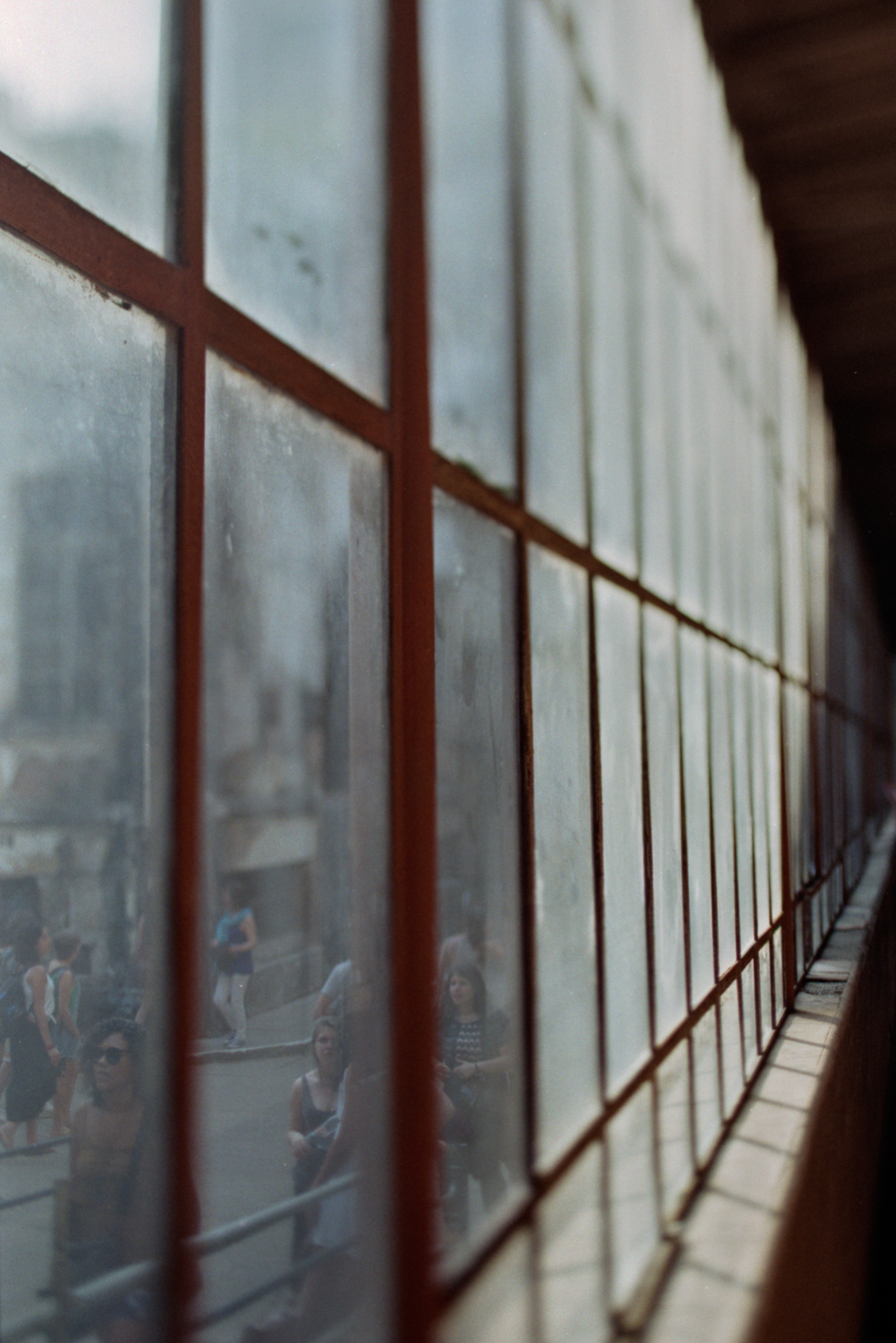 Film Photography   Pequenas doses   Small doses  61   Frankie e Marília (2)
